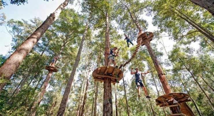 Tempat Wisata Outbound di Bandung-zona adventure-Treetop -Adventure-Park-zona adventure